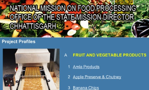 A webpage offering detailed food processing business information
