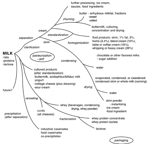 Overview and Fluid Milk Products Food Science