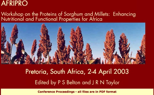 Website presenting papers of the Afripro 2003 Conference
