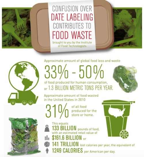 Food waste Infographic produced by FutureFood 2050